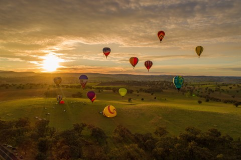 hot-air-balloons-above-Canowindra-countryside.jpg
